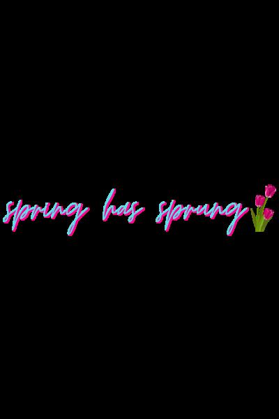 spring has sprung easter sticker